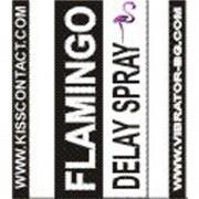 Flamingo - Delay Spray - 15ml